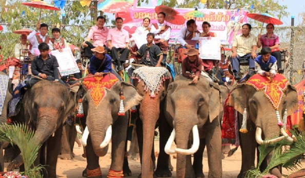 Elephant-Back-Wedding01_3