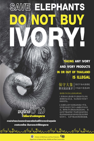 SAVE-ELEPHANTS-DO-BUY-NOT-IVORY_1-300x450